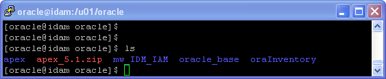 Oracle APEX 5.1 Installation on Linux - using HTTP Server (OHS): unzip apex file