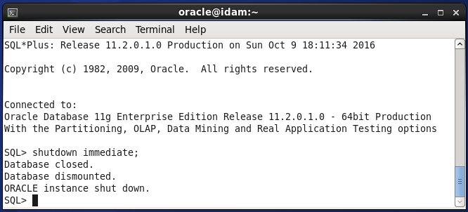 Stop Oracle Internet Directory Services : stop database instance